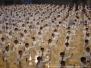 Noveno Campeonato Mundial de Wushu Beijing 2007